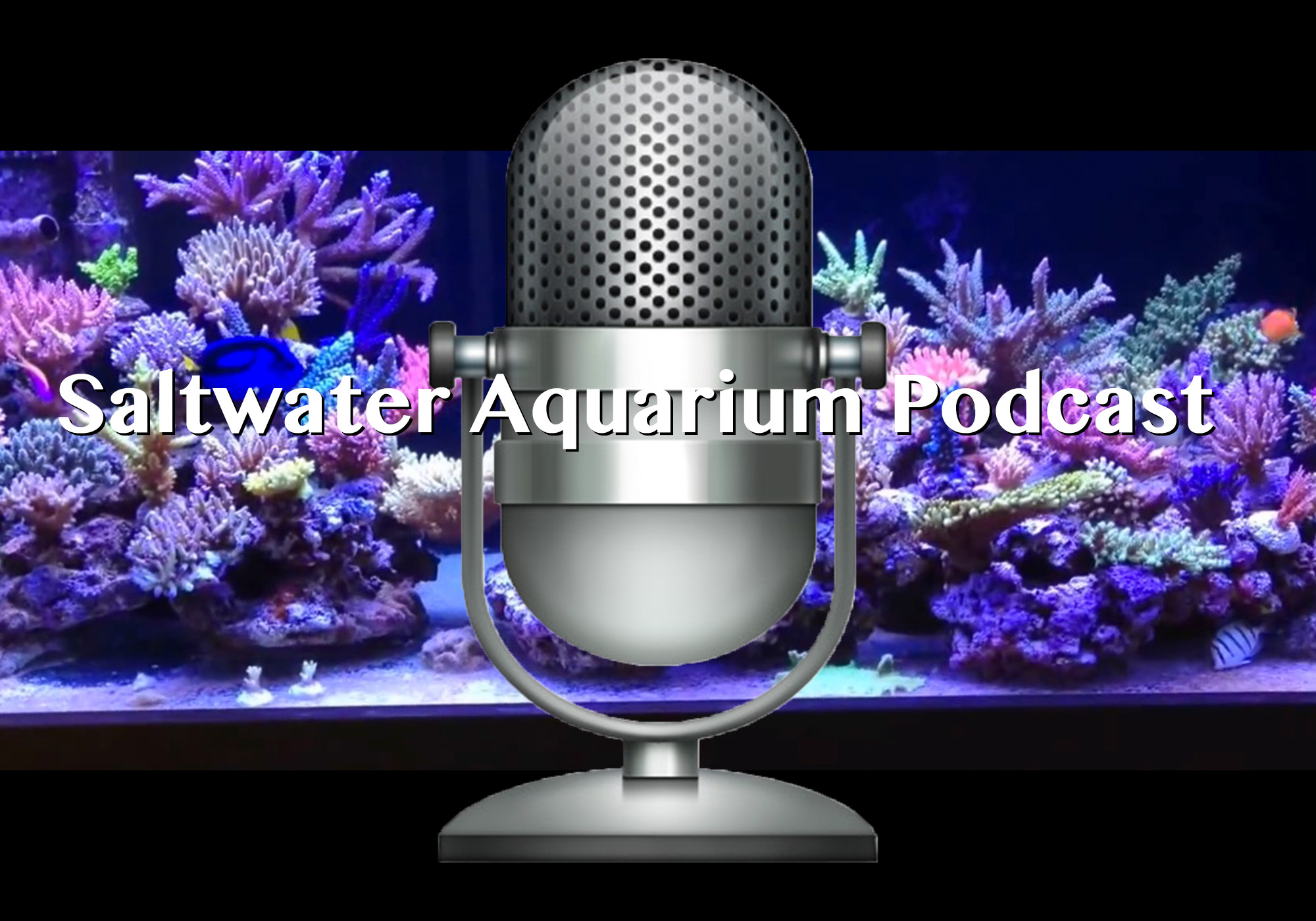 Aquarium Podcast