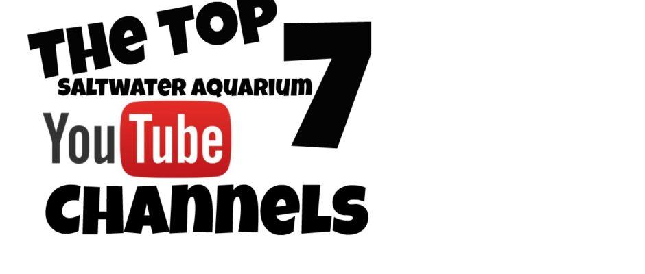 Top 7 Saltwater Aquarium Channels
